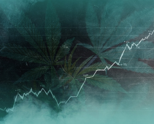 5 Cannabis Trends to Follow