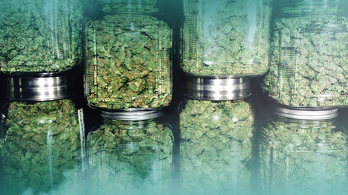 6 Best Inbound Marketing Solutions for Small Cannabis Businesses
