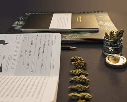 email marketing challenges for a cannabis business