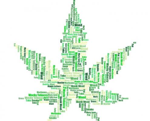 cannabis slang